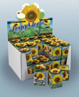 Greengift, Sunflower 40 pcs in showbox