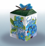 Greengift Forget-me-not