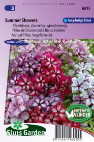 Phlox Summer Showers Mix (large flowered)