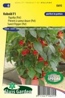 Sweet pepper (pot) Kobold F1