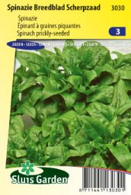 Spinach prickly-seeded (Early spring and late autumn crop)